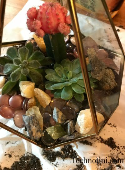 How to Make a Magical Gem Stone Terrarium