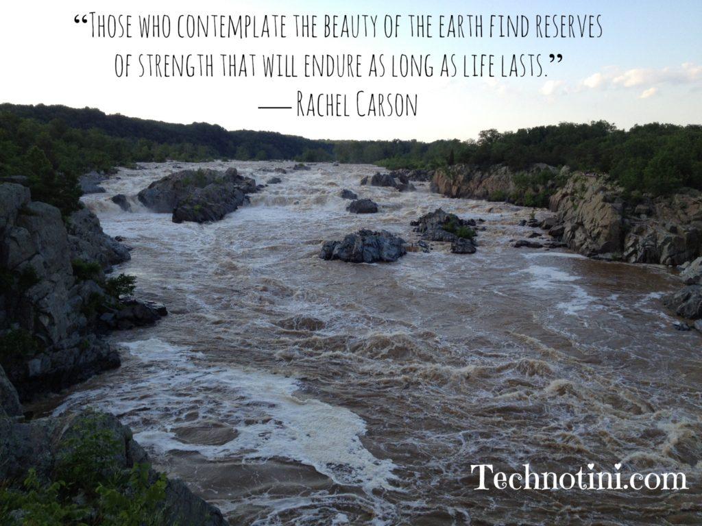 Quote_RachelCarson_waterfall.jpg