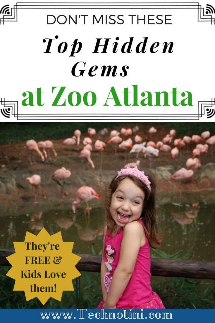 Don't miss these 3 amazing hidden gems on your next trip to Zoo Atlanta. They're Free and kids love them! #Atlanta #FamilyTravel